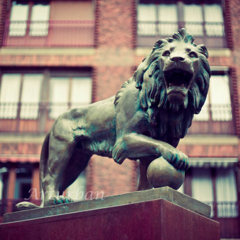 roaring lion statue