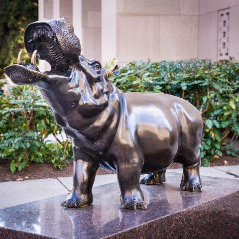 bronze hippo statue